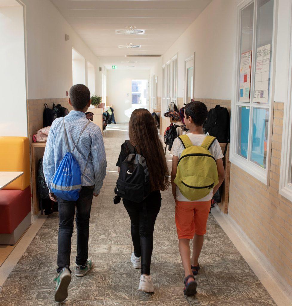 Gebouw - Pacelli school