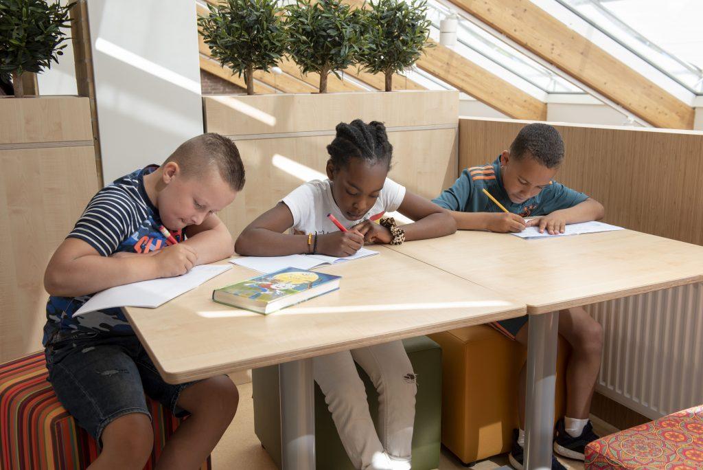 Samen leren - Pacelli school
